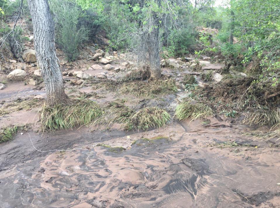 flooding near Payson