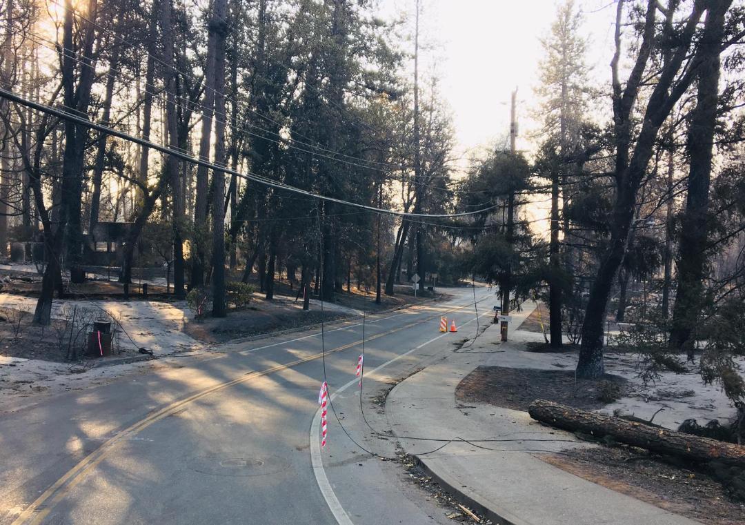 Hazardous Downed Powerlines in Paradise