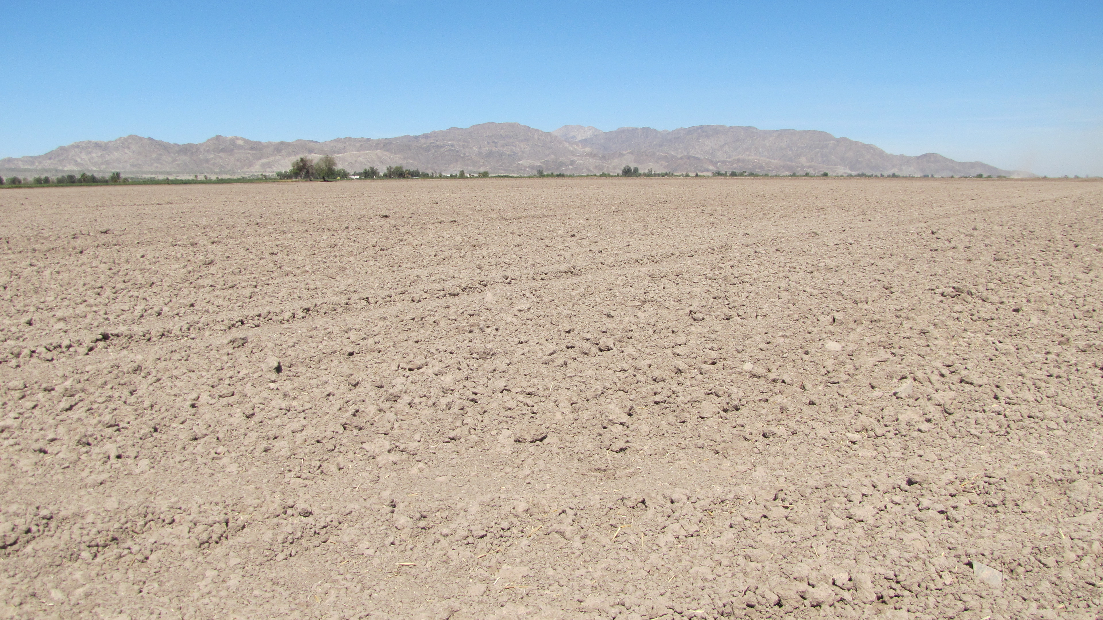 Water is the major problem for Mexicali farmers. The quake destroyed the valley's main irrigation canal, Nueva Delta. Government officials say it'll take three years to rebuild.