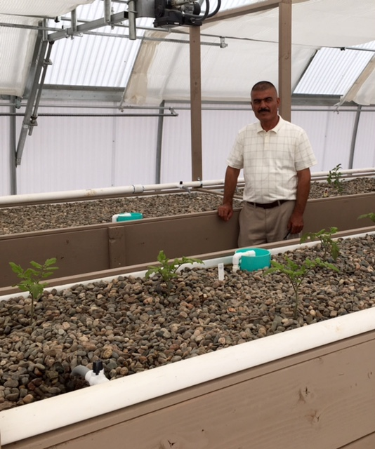 Aquaponics garden in kjzz for Arizona aquaponics