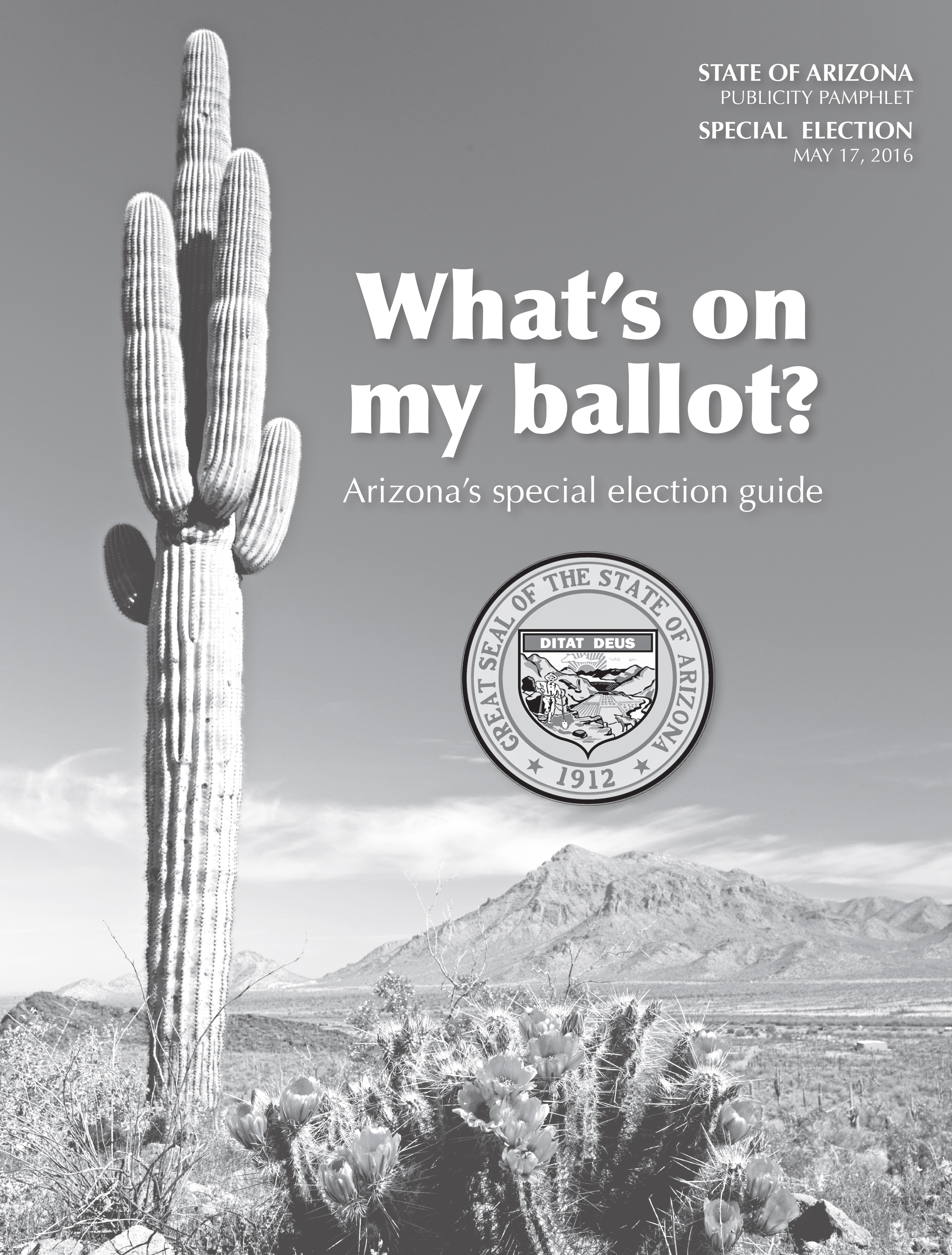 Arizona Special Election Guide