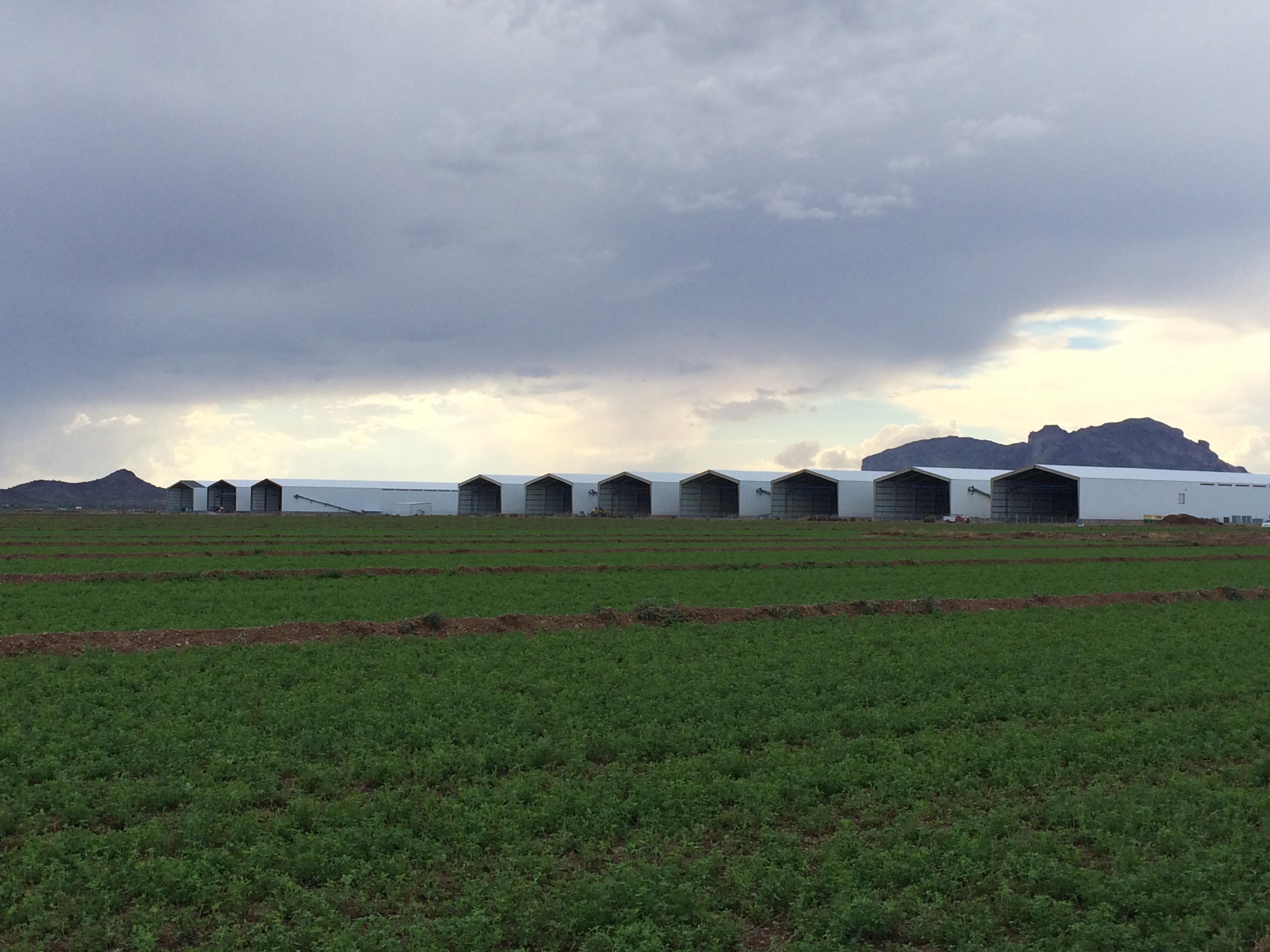 Hickmans Family Farms