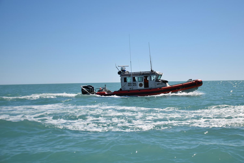 authorities patrol area to protect vaquita porpoise