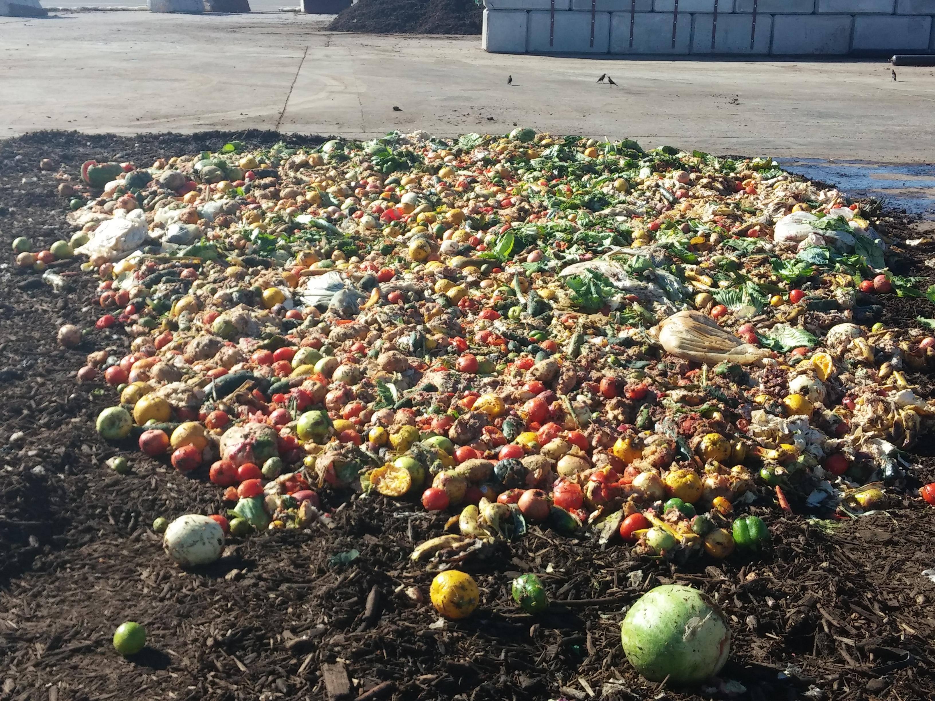 food, waste, compost