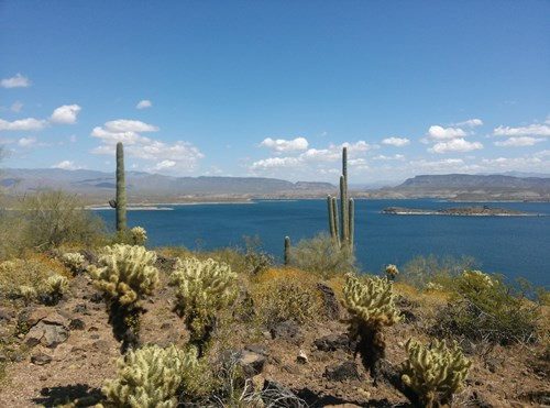 lake pleasant chat sites Live chat local and statewide live chat on discord  never thought i'd hear about lake pleasant again worst sleep i ever got most fun i ever had permalink .