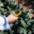 New Arizona Technology Aims To Improve Crop Quality, Yield