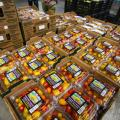 Florida Tomato Growers Reignite Anti-Dumping Battle With Mexican Producers