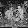 Code Talker, Longtime New Mexico Politician Dies at 94