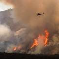 Whaleback Fire California