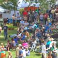 Wilcox Wine Country 2016 Spring Festival