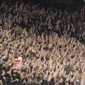 ASU fans