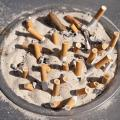 ASU Researcher: Sitting Is Not The New Smoking