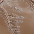 Will The Colorado River Ever Reach The Ocean Again?