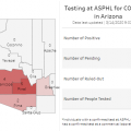 Arizona Coronavirus Cases Grow To 12