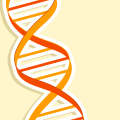 How Much Does Our DNA Affect Who We Are?