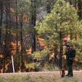 Coldwater Fire Still Burning, Is 30 Percent Contained