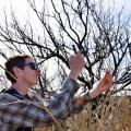 BioBlitz Sheds Light On Plant, Animal Life