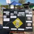 Groups Take On Trash, Invasive Species At The Salt River