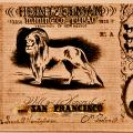 The Town Of Tubac Adopts New Currency To Attract Visitors