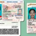 Arizona driver's licenses
