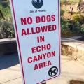 Service Dogs at Echo Canyon