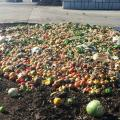 Dirty Recycling Contaminated Mostly By Food