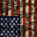 American Flag With Money