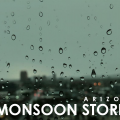 Arizona Monsoon Stories