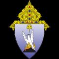 phoenix diocese