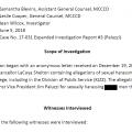 screen shot of report