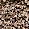 Firewood Gathering Ban Lifted In Arizona, New Mexico