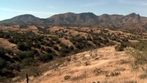 Why Environmental Groups Are Fighting The Rosemont Mine