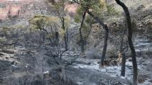 Grand Canyon Hiker Fined $53K For Accidentally Starting Fire