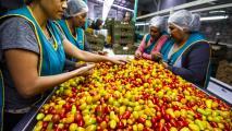 AZ Representatives Raise Concerns About Potential Mexican Produce Measures