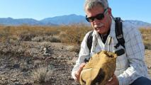 Climate Change, And Our Response To It, Is Making Life Hard For Desert Tortoises