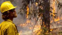 Decades-Old Blaze Marked Start Of Megafire Era