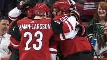 NHLs Proposed 24-Team Playoff Would Include Coyotes