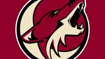 Arizona Coyotes Offer Street Hockey Clinics Around The Valley