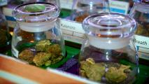 2 Proposals To Regulate Medical Marijuana Fail In Senate