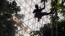 Biosphere 2 Study Shows Tropical Forests More Resilient To Climate Change Than Predicted