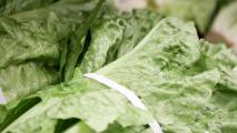 FDA Releases E. Coli Report On Romaine Lettuce Contamination
