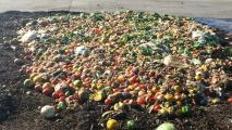 Study Shows Promise For Stemming Tide Of Food Waste