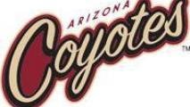 NHL Coyotes Name Change Takes Effect This Week