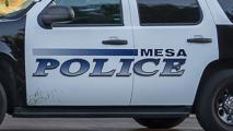 Mesa police vehicle