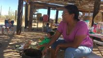 Monsoon Stories 2019: The Taste Of Saguaro Fruit
