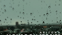 Monsoon Stories 2018: Finale