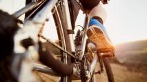 A Debate Rages Around Proposed Tucson Bike Ranch