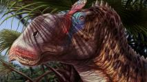 Arizona Citizen Scientists Unearth New Dinosaur Species