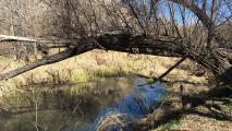 Prescott's Bid to Draw More Groundwater Could Threaten Verde River