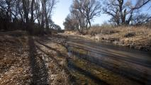 Environmentalists Concerned Development Will Harm San Pedro River